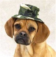 """Image of Casual Canine Green Camo Bucket Hat Small (5"""")"""