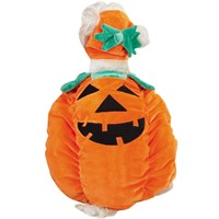 Image of Zack & Zoey Pumpkin Pooch Costume - SMALL